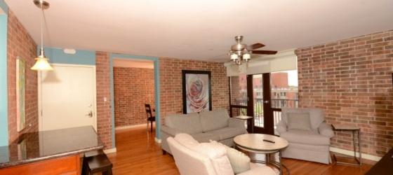 Darling Downtown Condo for Lease