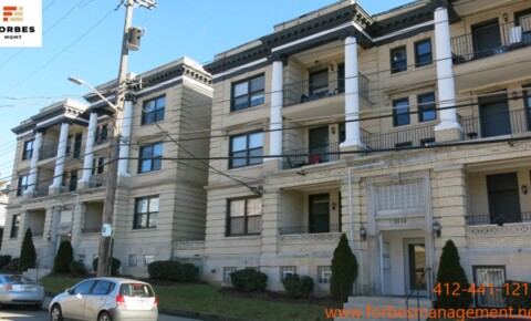 Apartments Near PITT Avail 8/1 S. Oakland!, Updated Kit w/DW! AC! Laundry on-site! for University of Pittsburgh Students in Pittsburgh, PA