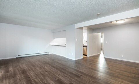 Apartments Near Bastyr 2 weeks free! Spacious renovated 2bd with high ceilings, XL balcony! for Bastyr University Students in Kenmore, WA
